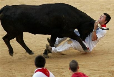 http://ccn1.net/POTD4/running-bulls/pamploma-10.jpg